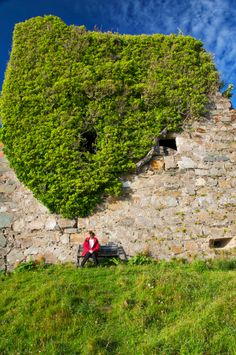 Castle Lachlan, or Old Castle Lachlan, is a ruined 15th-century castle on Loch Fyne, Scotland. It was the stronghold of Clan MacLachlan until 1746 when it was attacked by British Government forces. New Castle Lachlan was built as a replacement in 1790, around 1 kilometre (0.62 mi) to the north-east.