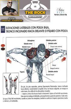 Elevaciones laterales con polea baja. Tronco inclinado hacia delante o pájaro con polea Muscle Up, Shoulder Workout, At Home Gym, Workout Challenge, The Rock, Gym Workouts, Challenges, Body, Exercise