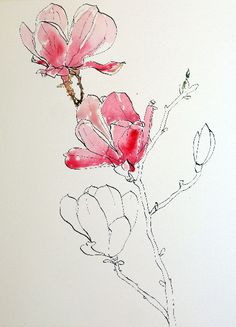 Ink Drawing start-of-watercolor-wash-for-pink-magnolias-pen-ink-and-wash-painting Watercolour Tutorials, Watercolor Techniques, Drawing Techniques, Pen And Watercolor, Watercolor Flowers, Watercolor Landscape, Plant Drawing, Painting & Drawing, Art Paintings