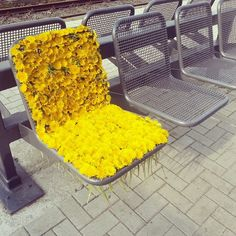 plantial:  I did this at a bus stop once. I missed my bus and the next one wasn't supposed to come for another hour, so I had time to kill. A little girl walking with her mom said it looked like a throne for a flower princess.