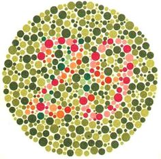 Ishihara Color Vision test