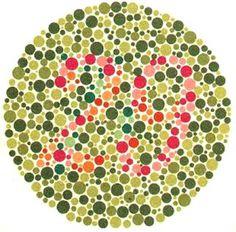 Ishihara Color Vision test
