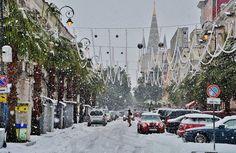 Мой первый настоящий Новый год: пальмы в снегу и бушующее море!: puerrtto