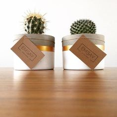 Best 12 Set of 3 concrete pots cement planters pencil holder modern home decor industrial style beton deko small square pot for office – SkillOfKing. Concrete Pots, Concrete Crafts, Concrete Design, Concrete Planters, Succulent Pots, Succulents, Decoration Cactus, Halloween Mason Jars, Dinner Party Decorations