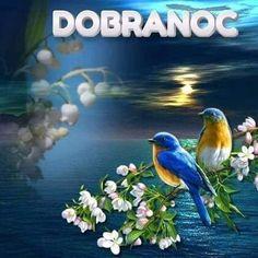 Good Night Sweet Dreams, Good Morning, Bird, Painting, Animals, Buen Dia, Bonjour, Animaux, Painting Art