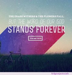 Isaiah 40:8 #god #jesus #quotes #religion #religionquotes #religousquote Flowers Quotes Tumblr, Flower Quotes, Jesus Quotes, Bible Quotes, Motivational Scriptures, Song Quotes, Faith Quotes, Short Christian Quotes, Christian Pictures
