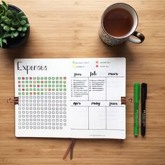 Bullet journal expense tracker. | @hollylovesplanning