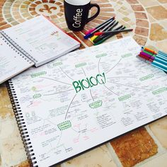 Textbooks and Tea : Mindmaps. This will help you a lot studying. Cute Notes, Pretty Notes, Studyblr, Study Techniques, Study Organization, School Study Tips, Study Skills, Study Hard, School Notes