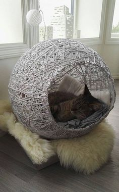 Haustier cute & super cat house ideas - indoor outdoor Your One Year-Old's Development The first Cats Wallpaper, Cat House Diy, Diy Cat Bed, House For Cats, Diy Bed, Cat Cave, Super Cat, Cat Room, Pet Furniture