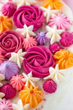 Butter cream flowers - step by step to the cake decor! - Rezepte Kuchen -You can find Butter and more on our website.Butter cream flowers - step by step t. Beef Pies, Mince Pies, Cupcakes Amor, Mini Cupcakes, Torte Au Chocolat, Green Curry Chicken, Red Wine Gravy, Egg Pie, Onion Pie