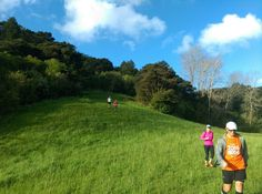 I found some blue and green!  - Gills Reserve Auckland New Zealand  - HTC Desire Eye  - Instagram