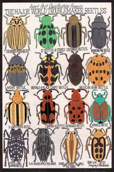 Gregory Blackstock, The Major World Troublemaker Beetles, 2008