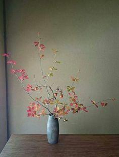 Beautiful branch of leaves in vase // Ikebana Arrangement Floral Ikebana, Arrangements Ikebana, Beautiful Flower Arrangements, Floral Arrangements, Beautiful Flowers, Exotic Flowers, Purple Flowers, Arte Floral, Deco Floral