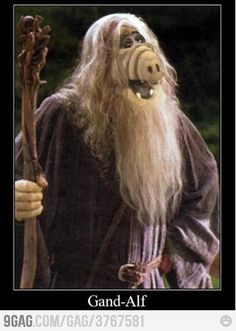 Funny pictures about Gand-Alf. Oh, and cool pics about Gand-Alf. Also, Gand-Alf photos. Nerd Love, Can't Stop Laughing, Middle Earth, Lotr, The Hobbit, Laugh Out Loud, Make Me Smile, I Laughed, Nerdy