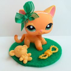 Littlest Pet Shop Orange Shorthair Cat #1643 w/Flower Eye & Accessories RARE #Hasbro
