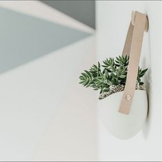 Featuring a new maple wall hook! Add some vertical greenery to any wall in your home. The hanging ceramic planter hangs from vegetable-tanned leather fastened with a brass screw. High fired porcelain creates a smooth white matte look.  Curate your own organic installation, grow an herb garden on your kitchen wall or use to store small notions above your desk. Each ceramic container is handmade and a great way to add a little greenery to any room in your home.  Ceramic planter measures 4.25…
