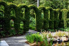 MySecretGarden: Heronswood Garden. Pictures - September 2015