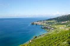 50 wunderschöne Ausflugstipps in der Schweiz Vevey, Switzerland, Places To Travel, Road Trip, Mountains, Water, Outdoor, Getting To Know, Places