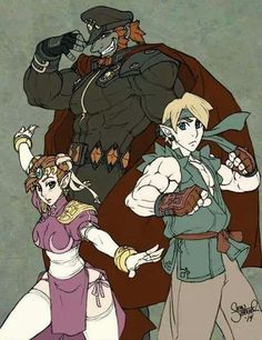 Legend of Zelda, Link, Gannondorf, Street Fighter, costume, Chun Li,Ryu,M.Bison