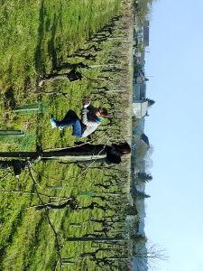 A la rencontre de nos pieds de vigne adoptés - Journée Découverte au Château de la Bonnelière #GourmetOdyssey