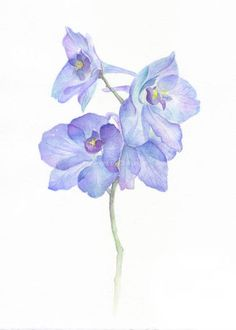 Abstract Watercolor, Watercolor Flowers, Watercolor Paintings, Art Floral, Larkspur Flower Tattoos, Delphinium Tattoo, Blue Flowers Images, Art Texture, Etsy