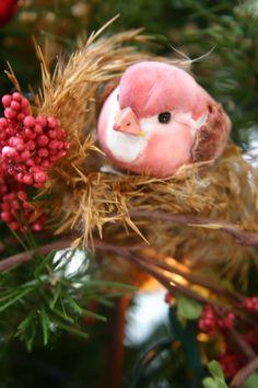 pink trimmer bird....so pretty
