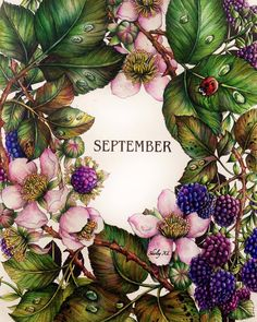 September, autumn is coming. Coloring Book Art, Colouring Pages, Adult Coloring, Theme Nature, Colored Pencil Techniques, Coloured Pencils, Color Pencil Art, Floral Illustrations, Art Sketchbook