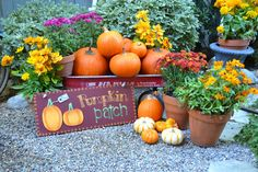 My Painted Garden: Join Me for My Fall Garden Tour
