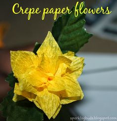 Crepe paper flowers - A simple and fun projects to teach kids to make flowers out of crepe paper!