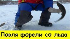 Ловля форели со льда на блесну. Карьер Золотая рыбка.