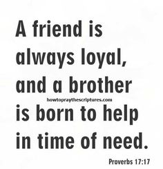 Looking for Bible verses about friendship. These Bible verses about friendship will assist you in strengthening the bond you have with your pals. Family Bible Quotes, Baby Bible Verses, Bible Verses About Friendship, Inspirational Quotes About Friendship, Life Verses, Bible Scriptures, Friendship Quotes, Proverbs 17 17, Jesus Quotes