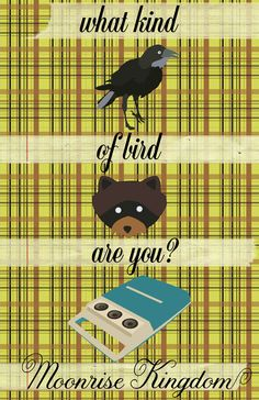What Kind of Bird Are You? Moonrise Kingdom
