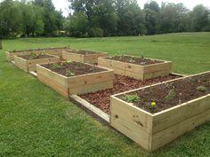 The ultimate raised bed veggie garden