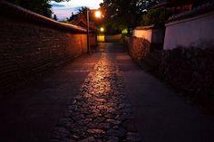 奈良公園へ大仏蛍を見に行ってきました - 気まぐれ 花★旅日記