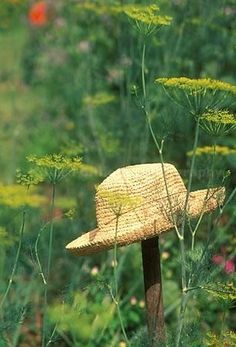 A Simpler Thyme