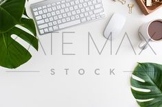 """Makes my Instagram feed GORGEOUS - and my life EASIER!!"" > > TONS of gorgeous images for YOU to use!! > > KateMaxStock.com  Modern Office > Tropical Leaves > Split Leaf Philodendron  Styled Stock Photography / KateMaxStock / Flat Lay / Product Mockup / Pretty Office / Desk From Above / Gorgeous Branding / Branding Colors / Office Styling / Pretty Office / Social Media Background / Instagram Image / Blog Photo"