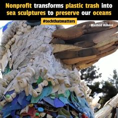 This nonprofit converts plastic trash into sea sculptures to preserve our oceans. Washed Ashore is a non-profit community art project based in Bandon,… Sea Sculpture, Sculptures, Green Business, Plastic Pollution, Pacific Beach, Art Activities, Community Art, Non Profit, Sea Creatures