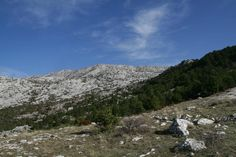 Given2Fly Adventures (Split, Croatia): Hours, Address, Kayaking & Canoeing Reviews - TripAdvisor