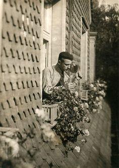 Breslauer, Marianne - Der Alchimist, Berlin 1927 (photograph)