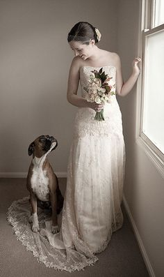 This lovely Boxer thought this portrait of her owner needed an extra little accessory on her train.