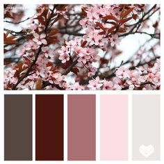 Color Palette: You Can Learn a Lot of Things From the Flowers — Paper Heart De. - Color Palette: You Can Learn a Lot of Things From the Flowers — Paper Heart Design - {hashtag} Burgundy Colour Palette, Color Schemes Colour Palettes, Colour Pallette, Color Palate, Color Combos, House Color Palettes, Pantone Color, Pantone Colour Palettes, Color Of The Year
