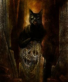Edgar Allan Poe: The Black Cat   Cats, The o'jays and The black