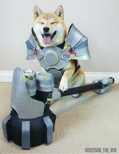 Reinhardt Doge