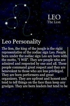 Leo The Lion Quotes | Test review and rating