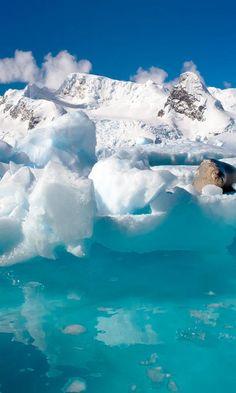 ✯ Antarctica, Glacier