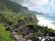 Du möchtest nach Madeira? Du möchtest das erste Mal nach Madeira reisen und suchst Informationen dazu? Oder du warst schon auf Madeira und möchtest jetzt (wie ich) immer wieder hin? Dann bist du hier richtig! In meinem Reiseblogfindest du viele Infos, die du für deine Madeira-Reise nutzenkannst. Das können Hotelempfehlungen, Wanderstrecken oder Linktipps sein. Wenn du magst, startest du einfach mit diesen Beiträgen: In diesem Artikel kannst du lesen, was du dir auf Madeira auf alle Fälle…