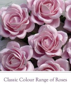 Wild Orchid Crafts offers paper flowers for craftmaking, wedding, table and interior decorations Paper Flowers Craft, Paper Roses, Flower Crafts, Wild Orchid, Orchids, Plants, Wedding, Bebe, Valentines Day Weddings