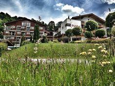 so kann der Sommer in Kitzbühel aussehen..