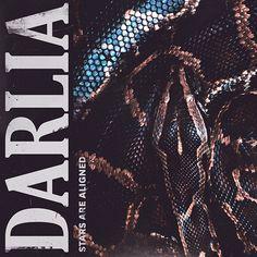 Darlia - Singles - Samuel Burgess-Johnson
