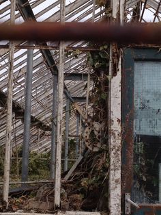 Derelict greenhouse at Walton Gardens